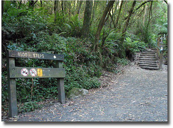 1000 Steps Trail commemorating The Kakoda Trail Mount Dandenong compliments of http://www.flickr.com/photos/dey/84250636/