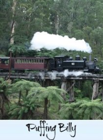 link to page on the Puffing Billy