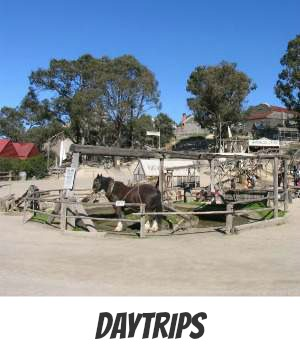 Image link to Site page on Day Trips from Melbourne
