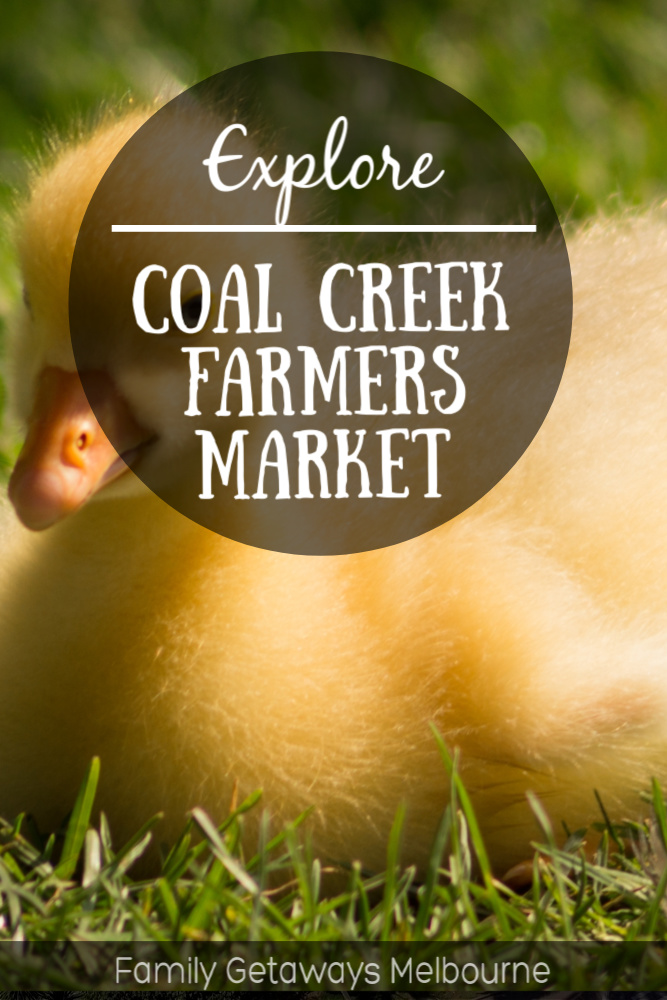 coal creek farmers market