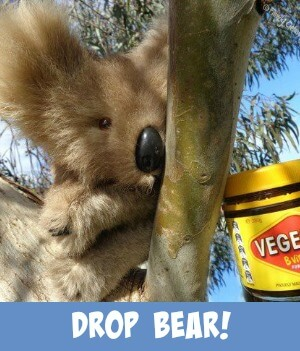 image link to site page on the legendary Drop Bear