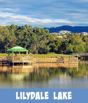 thumbnail image link to site page on Lilydale lake Melbourne, Australia