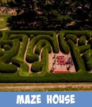 Thumbnail image link to site page on the Maze House
