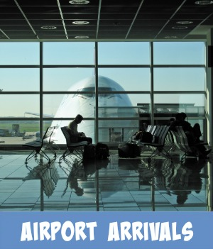 Image link to Site page on Melbourne airport arrivals