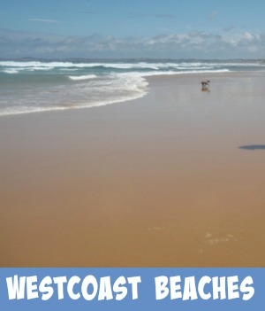 westcoast beaches link graphic