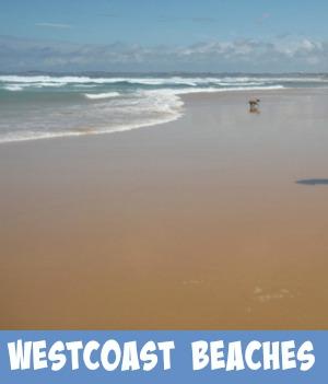 westcoast beaches link graphic