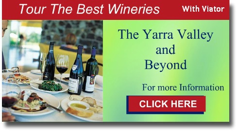 Graphic link to Viator Yarra Valley Tours