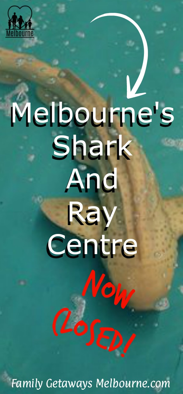 image to pin to Pinterest of the Shark and Stingray Centre