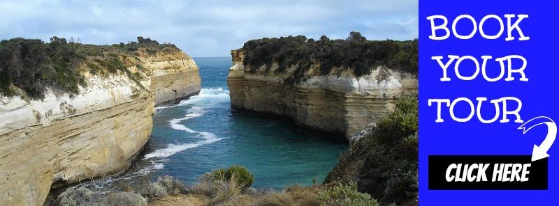 Book the impressive Great Ocean Road Eco Tour