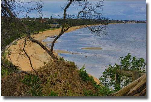 Safe family beaches of Mordialloc and Sandringham shoreline compliments of http://www.flickr.com/photos/gawthrop/7829824016/