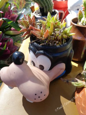 recycled Goofy mug at the St Andrews Market