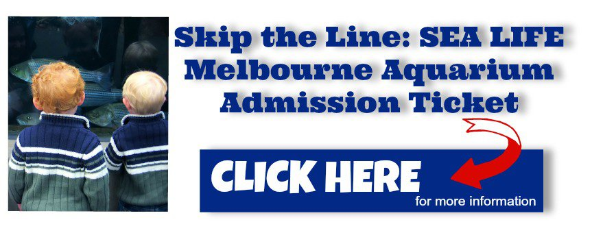 Image to link to the skip the line Melbourne Aquarium admission ticket