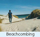 Thumbnail link to site page on beachcombing