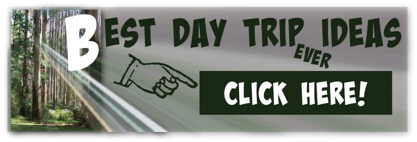 Banner advertisement graphic for day trip ideas from Viator