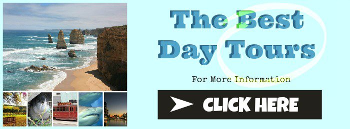 Banner image for day Tours