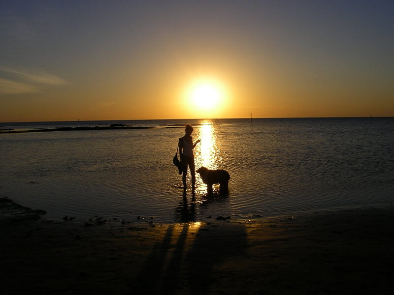 Sun setting at the dog friendly beach