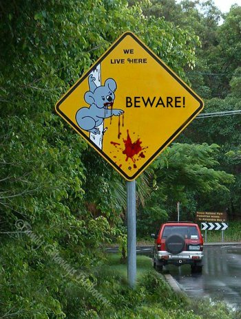 Drop Bear roadside Beware sign
