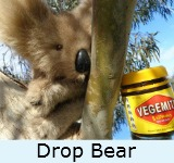 Graphic link to site page on the Drop Bear