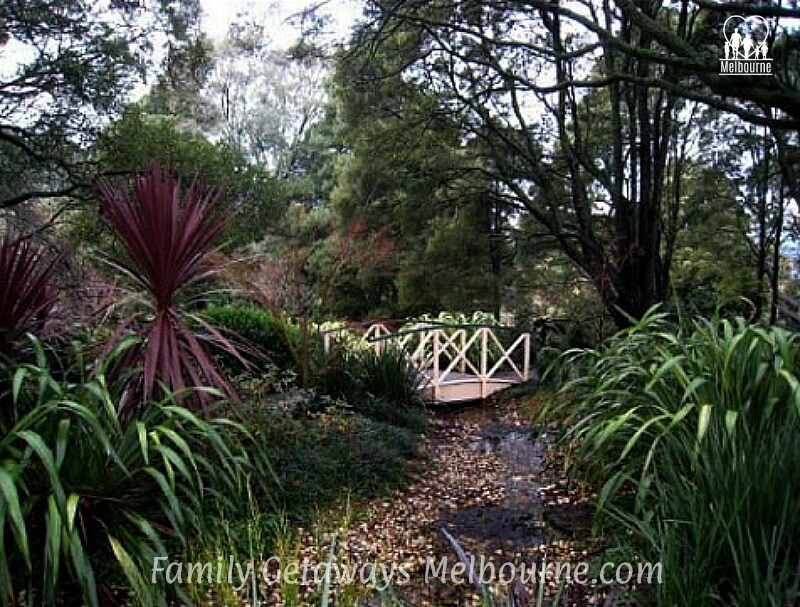 The English Garden At Skyhigh Mt Dandenong Melbourne Australia