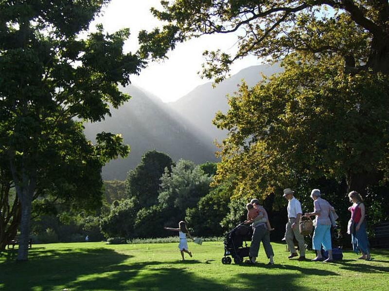 Family picnic in the park
