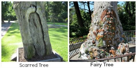 Scarred Tree and Fairy tree Fitzroy Gardens Melbourne Australia