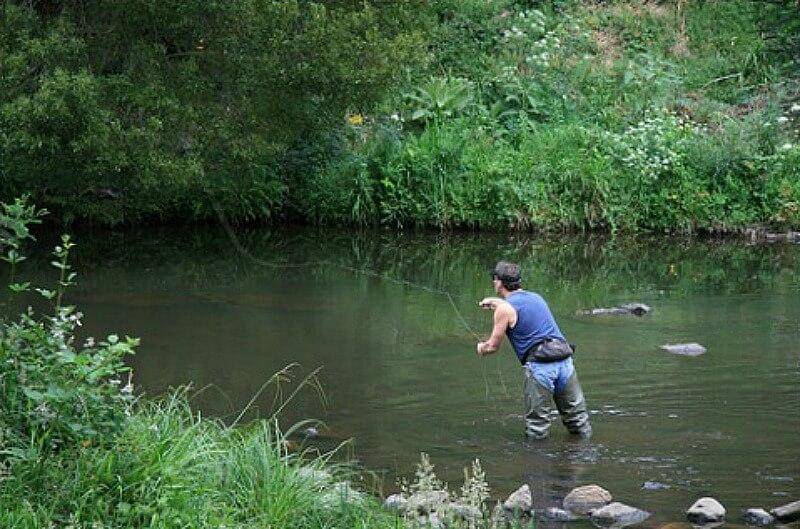 Fly fishing compliments of http://www.flickr.com/photos/splatt/320309110/