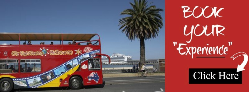 Image banner for the Viator Hop On Hop Off Bus tour
