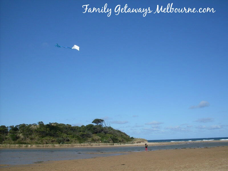 1st time flying a kite at Angelsea beach Victoria Australia