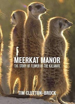 Fishpond book about meerkat manor
