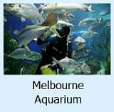 Thumbnail link to Site page on the Aquarium