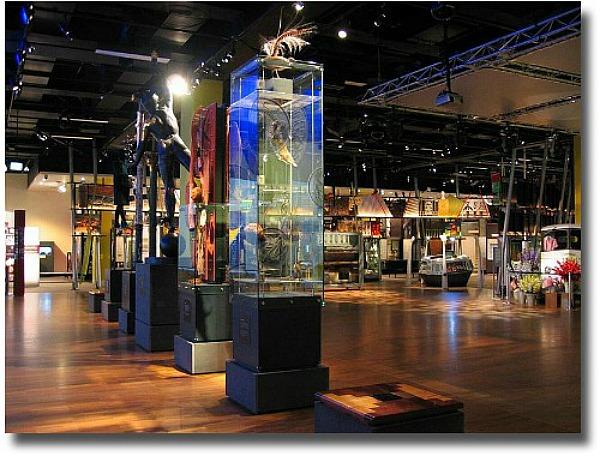 Melbourne Museum exhibition space