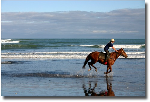 Melbourne beach with horse racing through the shallows
