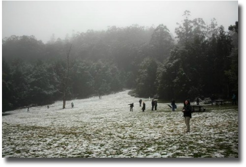 Yarra Ranges blanketed with snow compliments of my Mate Steve Curle.