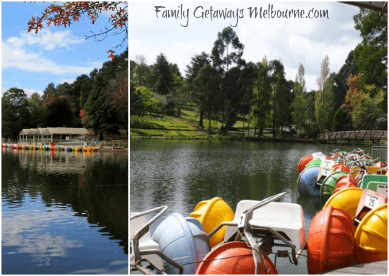 Paddle boats on Lake Treganowan in the Dandenong Ranges, Victoria - Australia
