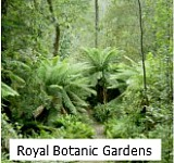 Thumbnail graphic link to Site Page on The Royal Botanical Gardens in Melbourne