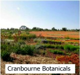 Thumbnail link to the Site page on the Cranbourne Botanic Gardens
