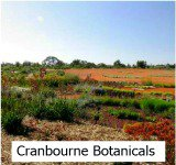 thumbnail image link to site page on cranbourne botanic park