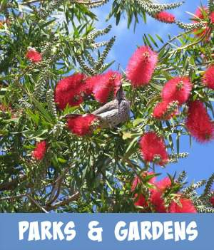 image link to site page on Melbourne's Parks and Gardens