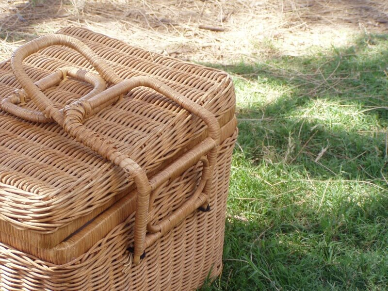 Modern picnic basket filled with picnic essentials