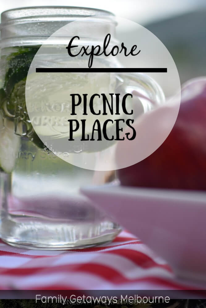 image to pin to pinterest for the page on picnic places