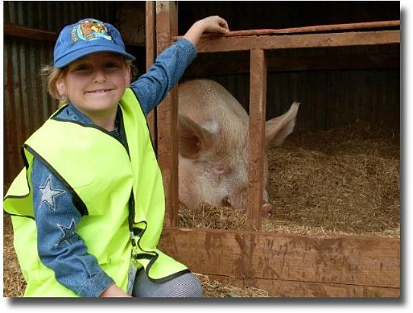 kids love Edgar Alan pig