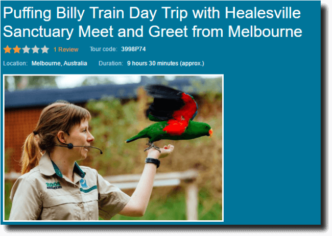 Viator Meet and Greet Puffing Billy tour