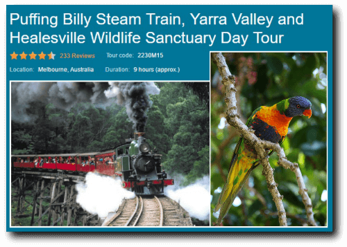 Viator Coach Day Tour Puffing Billy