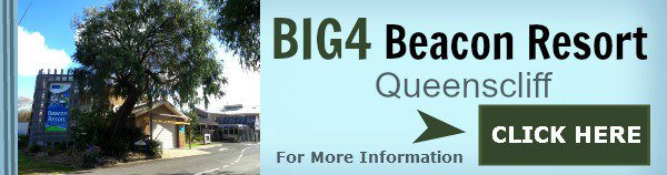 Big4 Beacon resort Accommodation Queenscliff