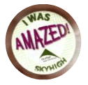The Amazing Achievement Badge