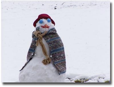Snowman compliments of  http://www.flickr.com/photos/davidwiley/118814375/