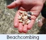 thumbnail image to the site page on beachcombing