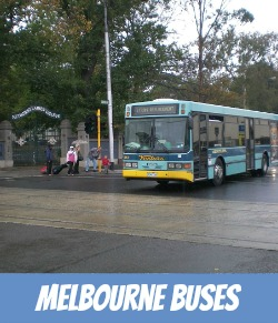 thumbnail image link to page on site for Melbourne bus transport