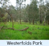 thumbnail-link-to-site-page-on-the-westerfolds-park