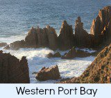 thumbnail-link-to-site-page-on-western port bay beaches